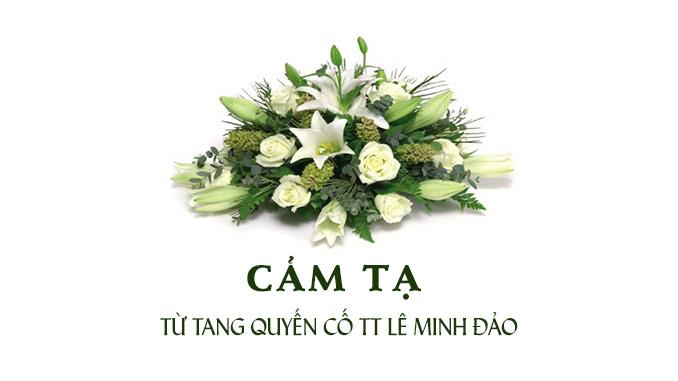 Cam-Ta–feature-image